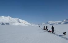 Glacier de Rabotbreen et d'Ulvebreen.